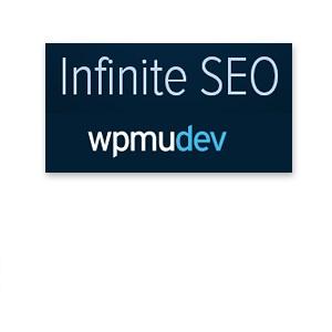 infinite-seo-crack