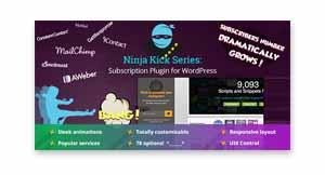 ninja-kick-crack